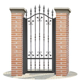 Fences doors wrought iron PV0005